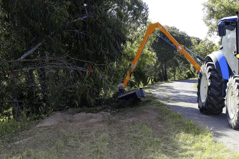 Arboricultura de Abílio Santos